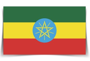 cafe-ethiopien-torrefaction.png